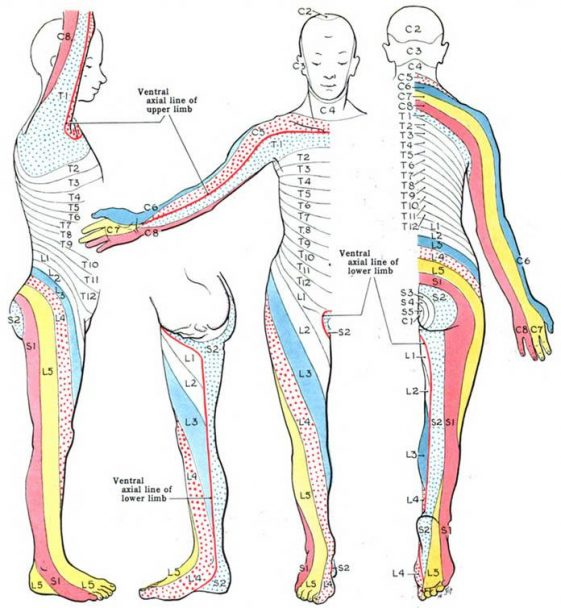 map for magnet therapy